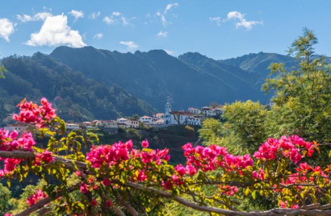 Von Blumen und Wein auf Madeira