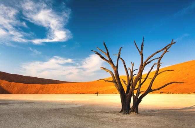Gebeco - Erste Namibia-Reise erfolgreich durchgeführt