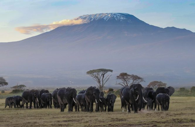 Enchanting Travels Kenia erhält Travelife-Partnerstatus