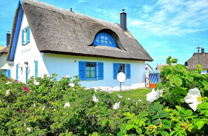 Ferienhäuser Reethäuser Strandwohnungen Insel Rügen direkt beim Eigentümer buchen spart Gebühren und Kosten