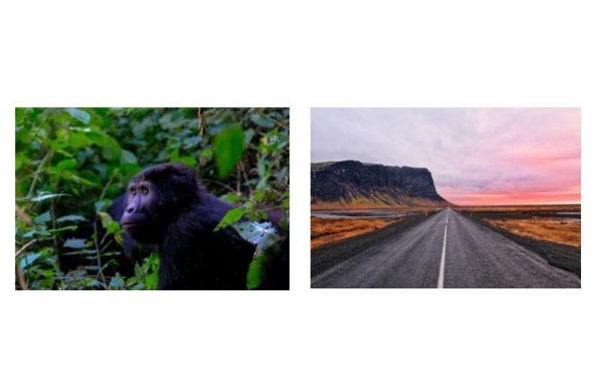 Das Experten-Team von Enchanting Travels hat einige Vorschläge