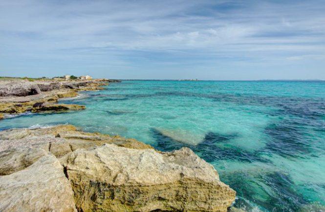 Klima-Krise am Mittelmeer: Mehr Quallen, weniger Korallen
