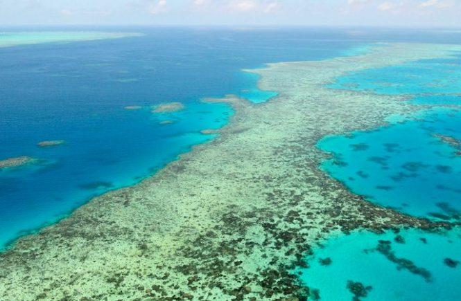 Verliert das Great Barrier Reef jetzt den Welterbe-Status?
