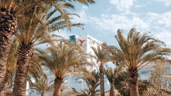 Eventreihe Palmarama im Ushuaïa Ibiza Beach Hotel